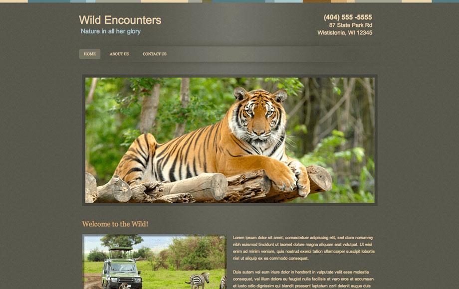 website for me